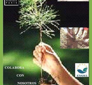 3ª CONVIVENCIA EN LA SIERRA DE RICOTE, PLANTA UN PINO 2010 1